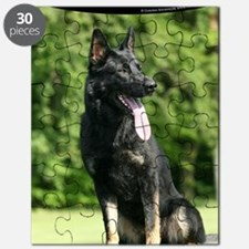 cp_vert_gsd_cover Puzzle