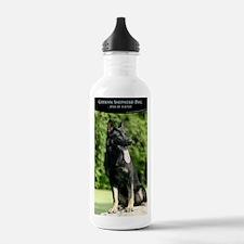 cp_vert_gsd_cover Water Bottle