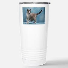 April2011 Travel Mug