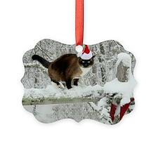 December2011 Ornament