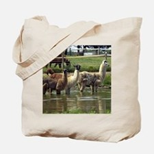 llamatrio1_calendar Tote Bag