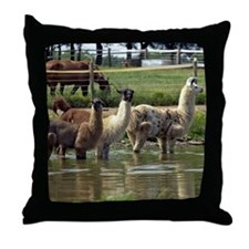 llamatrio1_calendar Throw Pillow