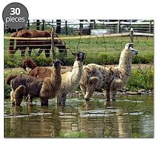 llamatrio1_calendar Puzzle