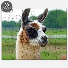 llama2_btn Puzzle