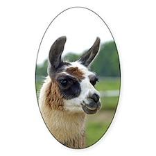 llama2_iphone4c Decal
