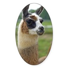 llama2_iphone3G Decal