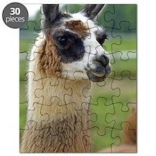 llama2_iphone3G Puzzle