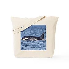 Copy of IMG_9350 Tote Bag