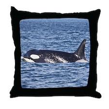 Copy of IMG_9350 Throw Pillow