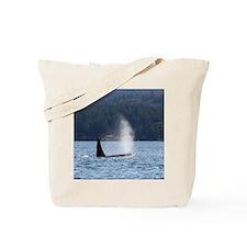 Copy of IMG_9422 Tote Bag