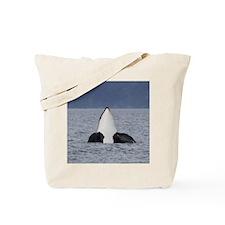 Copy of IMG_3495 Tote Bag