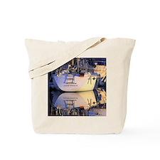 Copy of IMG_7057 Tote Bag