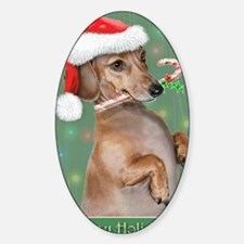 Dachshund Lillys Christmes Sticker (Oval)