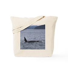 Copy of IMG_3588 Tote Bag