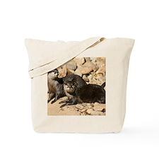Copy of IMG_8897 Tote Bag