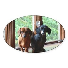 dasie and harley window seat Decal
