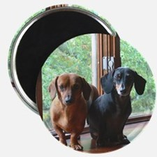 dasie and harley window seat Magnet