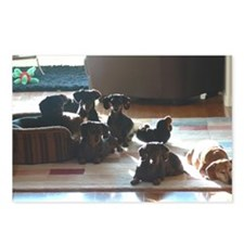 The Weiner Pack Postcards (Package of 8)