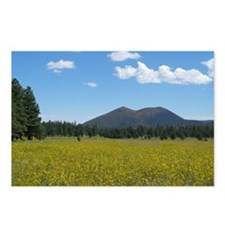 Sunset Crater Volcano NM Postcards (Package of 8)