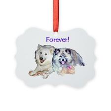 forever-adobe Ornament