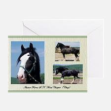 Beautiful Shire Draft horse Greeting Card