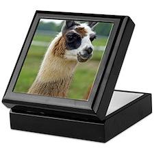 llama2_lp Keepsake Box