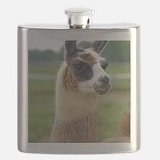 llama2_lp Flask