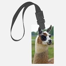 llama2_lp Luggage Tag