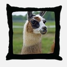 llama2_lp Throw Pillow