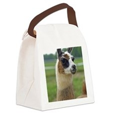 llama2_lp Canvas Lunch Bag