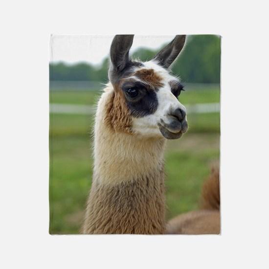 llama2_lp Throw Blanket