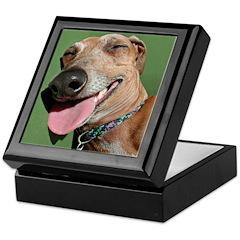 Italian Greyhound Silly Dog Keepsake Box