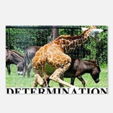 DETERMINATION1 Postcards (Package of 8)