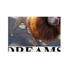 DREAMS1 Rectangle Magnet