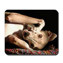 Italian Greyhound Smunch Mousepad