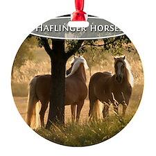 cp_hafi_cover Ornament