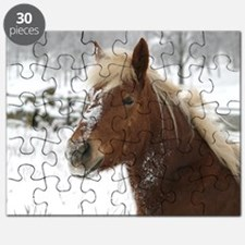 cp_hafi_jan Puzzle
