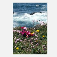 33108 Mendocino Botanical Postcards (Package of 8)