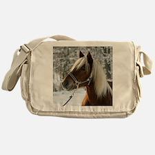 cp_vert_hafi17 Messenger Bag
