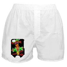 443_iphone_case copy Boxer Shorts