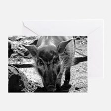 (12) Evil Pig Greeting Card