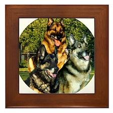 Kaiser jessta quinta#1 Framed Tile