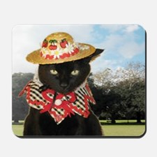 June/lickycat2/Country Licky Mousepad