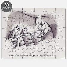 sci42009a Puzzle
