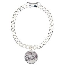 sci42009a Bracelet