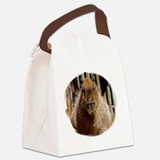 (16) Capybara Staring Canvas Lunch Bag