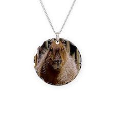 (15) Capybara Staring Necklace