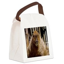 (15) Capybara Staring Canvas Lunch Bag