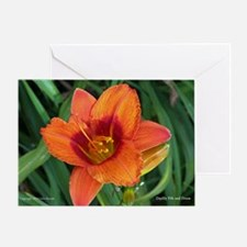 Daylily Fife and Drum Greeting Card