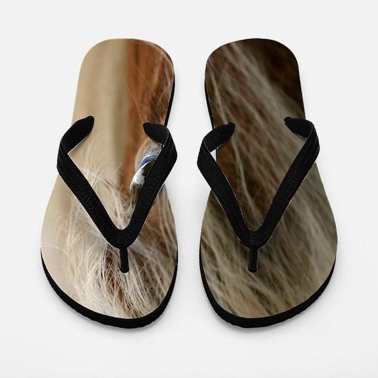 cp_vert1_hafi Flip Flops